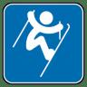 Freestyle-Skiing-Aerials icon