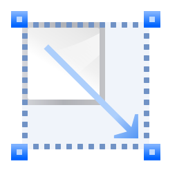 Actions transform scale icon