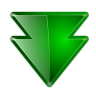 Actions-arrow-down-double icon