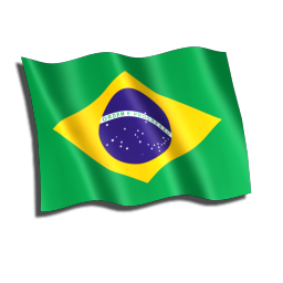 Brasil Flag icon
