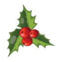 Christmas-Mistletoe icon
