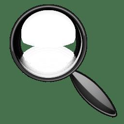 loupe icon