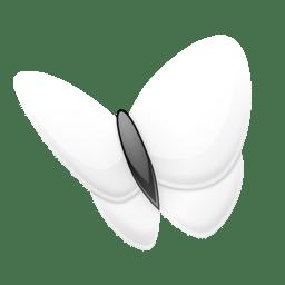 msn explorer icon
