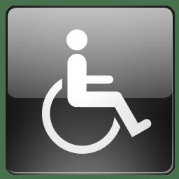 Opt accessibilite icon