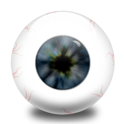 oeil icon