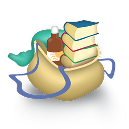 Bag books icon