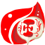 Folder Red Backup icon