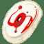 Optical Drive icon