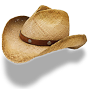 Hat-cowboy-straw icon