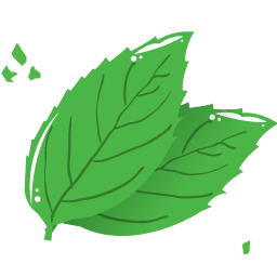 Mint leaf icon