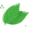 Mint-leaf icon
