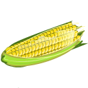 [تصویر: Corn-icon.png]