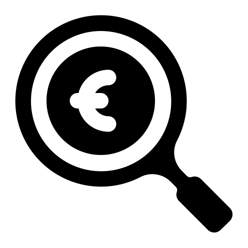 Search euro icon