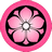 Pink Kikyo icon