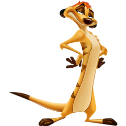 timon icon