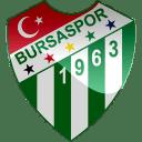 Bursaspor icon