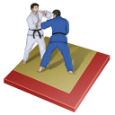 judo icon