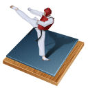 taekwondo icon
