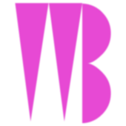 WB old intro icon