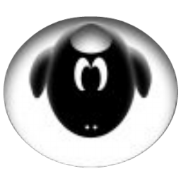 albino black sheep