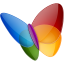 Papillon MSN icon