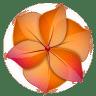 Illustrator-2 icon