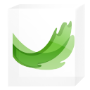 Ms expression web icon