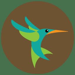 Seo hummingbird icon