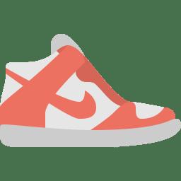 Nike dunk icon