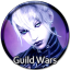 Guild-Wars icon