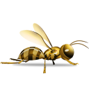 Wasp icon