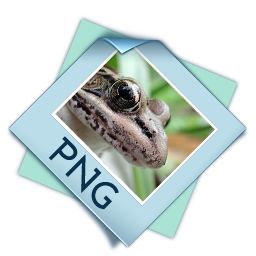 Filetype png icon