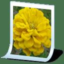 image format jpg icon