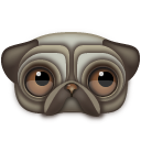 pug icon