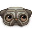 http://icons.iconarchive.com/icons/turbomilk/zoom-eyed-creatures/64/pug-icon.png