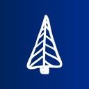 Tree 4 icon