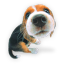 Puppy 1 icon