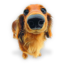 Puppy 4 icon
