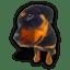 Puppy-9 icon