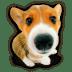 Puppy-10 icon