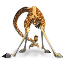 Madagascar Melman icon
