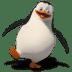 Madagascar-Skipper icon