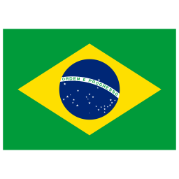 BR Brazil Flag icon