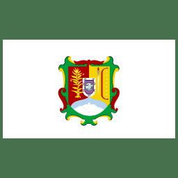 MX NAY Nayarit Flag icon