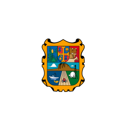MX TAM Tamaulipas Flag icon