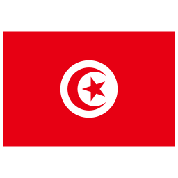 TN Tunisia Flag icon