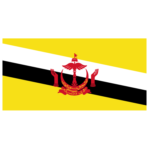 BN Brunei Flag icon