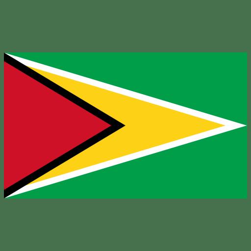 GY-Guyana-Flag icon
