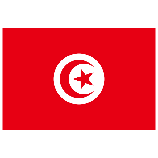 TN-Tunisia-Flag icon