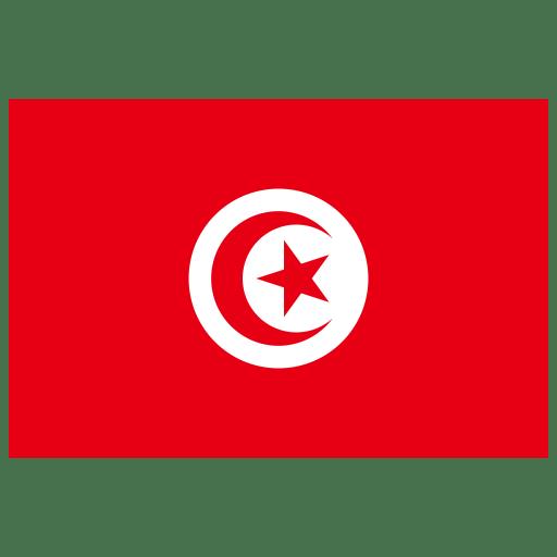 TN Tunisia Flag icon